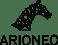 Logo_ARIONEO_sans signature_N